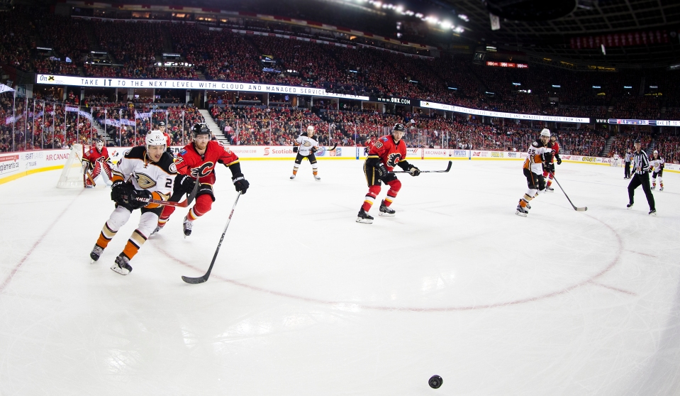 Calgary Flames vs Anaheim Ducks December 29, 2015 ©KevinLightPhoto _31Q0948