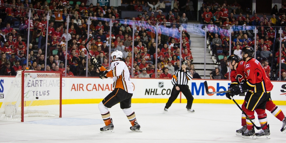 Calgary Flames vs Anaheim Ducks December 29, 2015 ©KevinLightPhoto _31Q1848