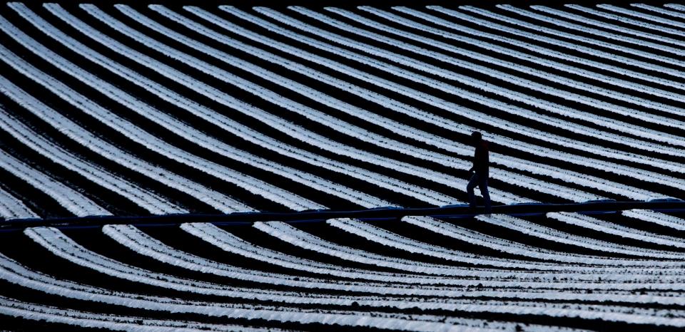 farmer field silouette Photo © Kevin Light 0007