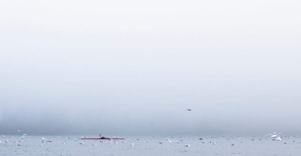 Rowing rower lake fog Photo © Kevin Light 0002