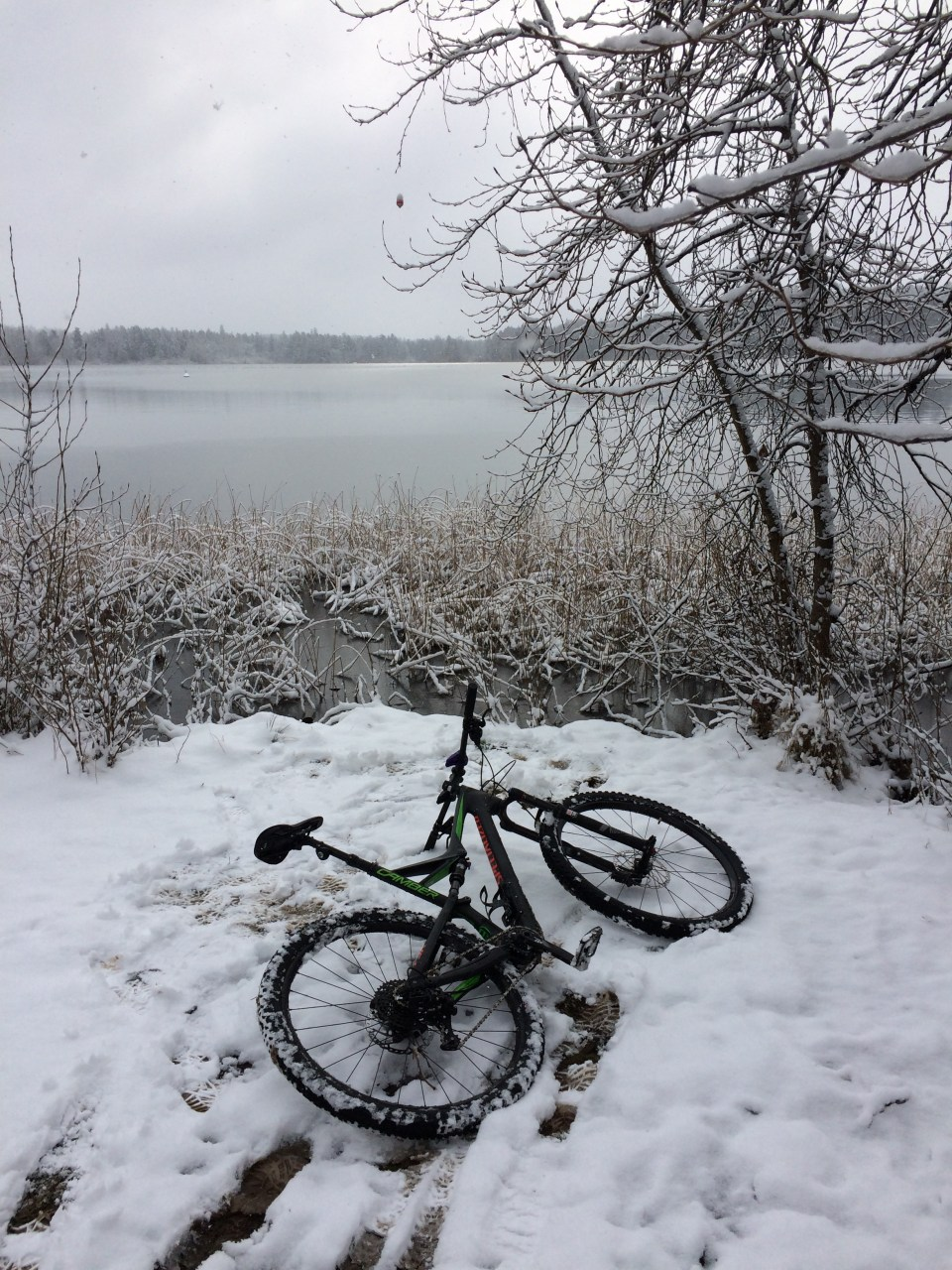 elk-lake-victoria-snow-feb-6th-2017-kevin-light-photo-12